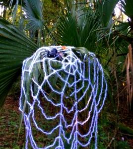 mudwalk-spiderweb