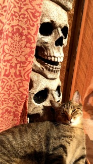 percey and skulls