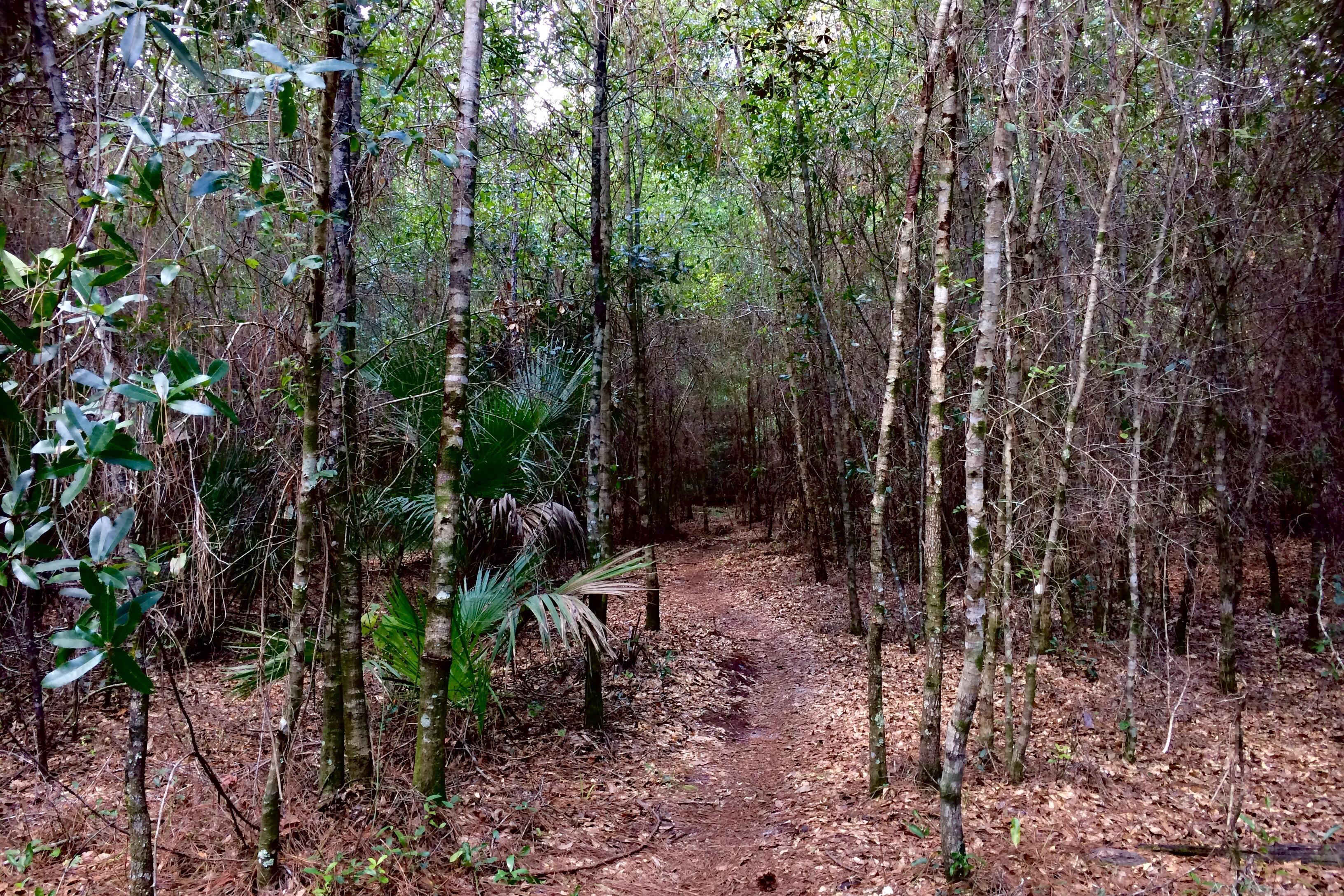 biking-trail-oct-1-1